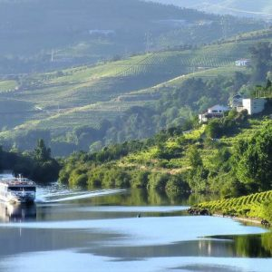 Cruises in the Douro