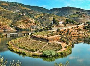 Como Planear uma Viagem ao Porto e Vale do Douro?