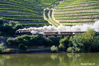 Comboio Histórico