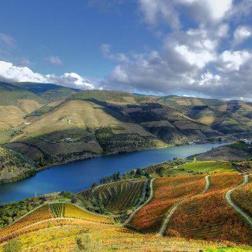 6 razões para visitar o Douro