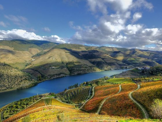 6 reasons to visit the Douro